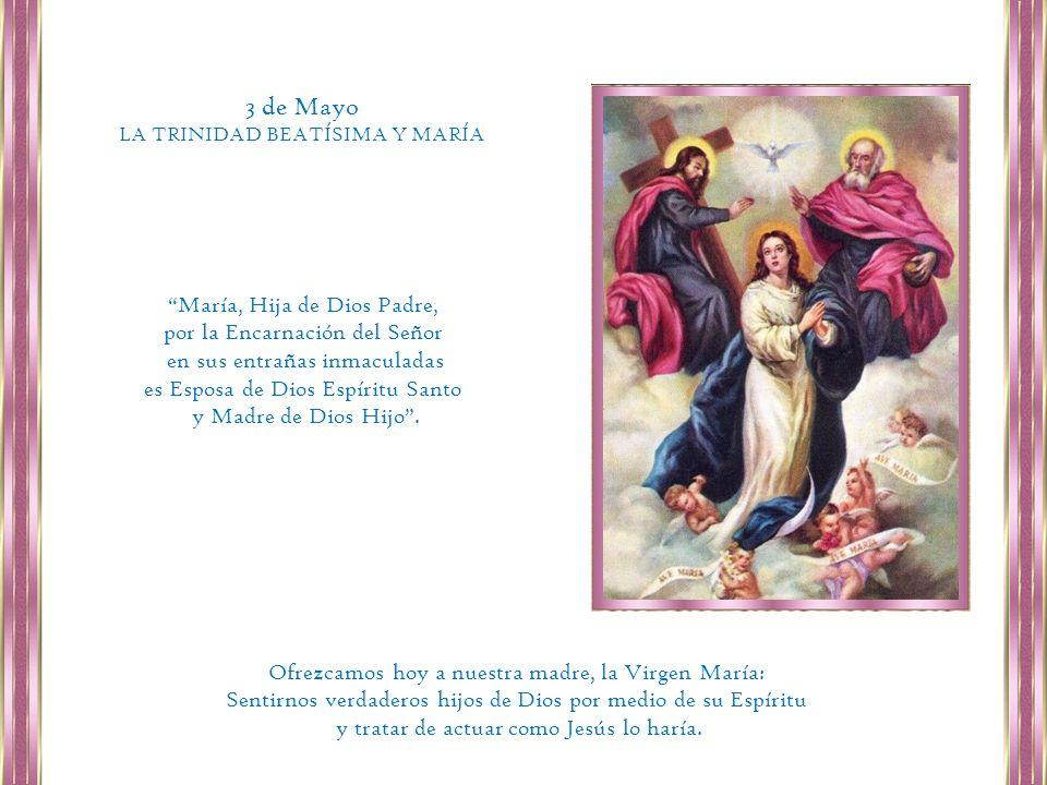 Somos aún peregrinos, pero Nuestra Madre nos ha precedido y nos señala que es posible llegar y que, si somos fieles, llegaremos.