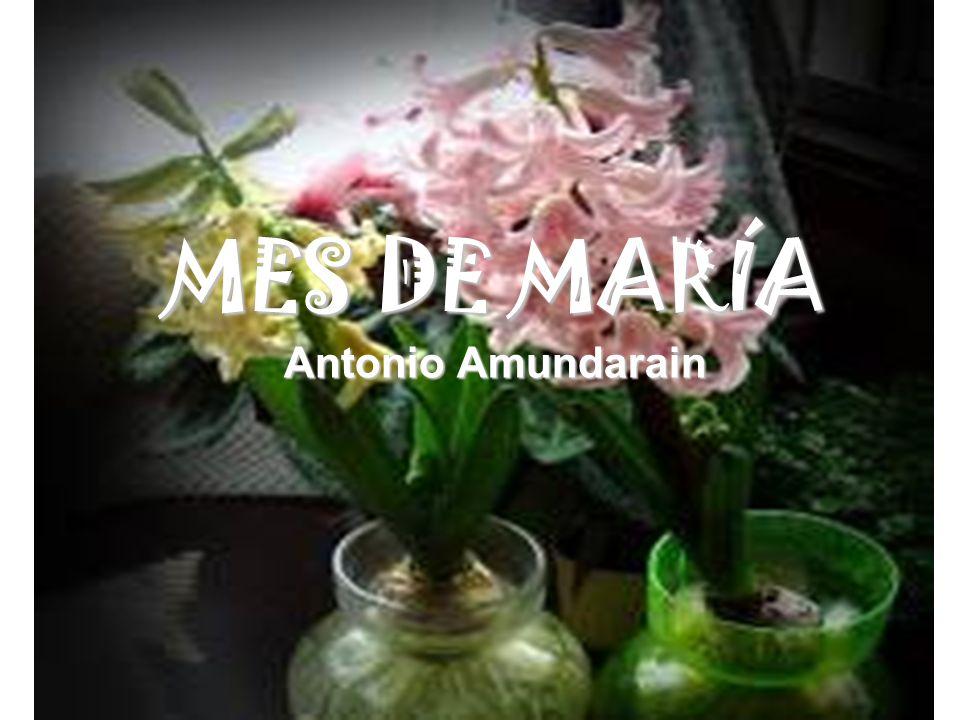 MES DE MARÍA Antonio Amundarain