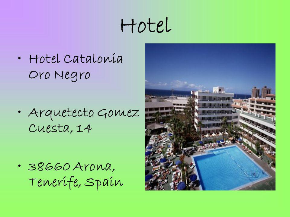 Hotel Hotel Catalonia Oro Negro Arquetecto Gomez Cuesta, 14 38660 Arona, Tenerife, Spain