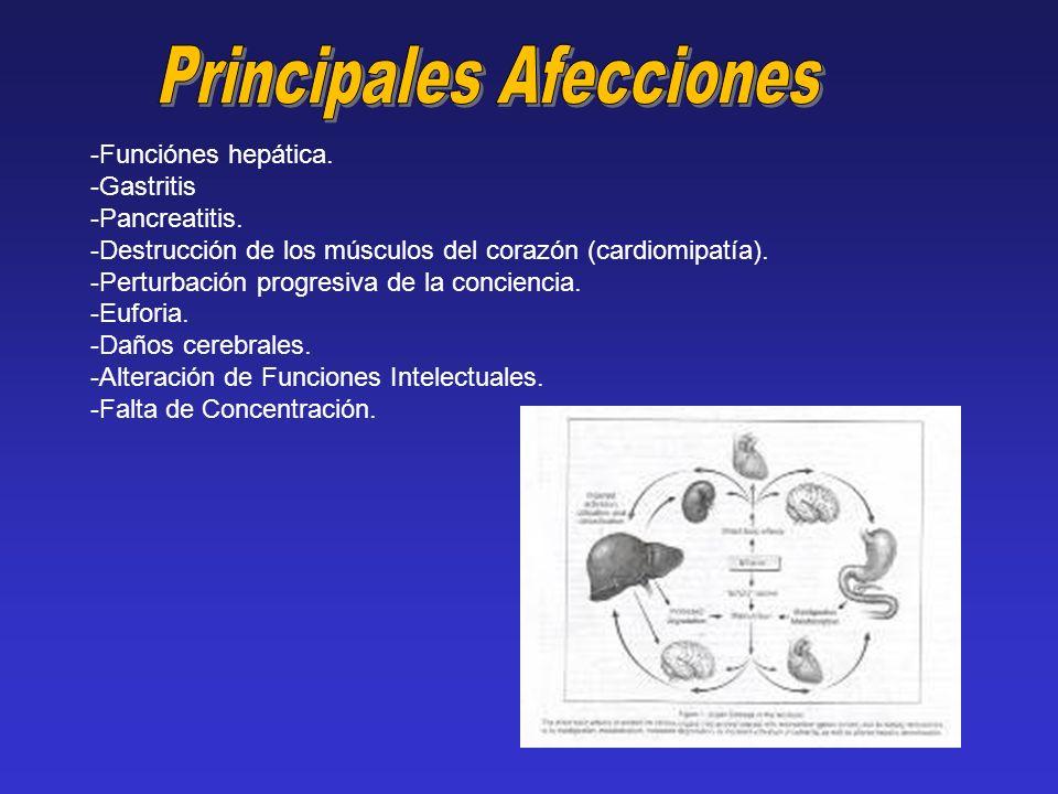 -Funciónes hepática. -Gastritis -Pancreatitis. -Destrucción de los músculos del corazón (cardiomipatía). -Perturbación progresiva de la conciencia. -E