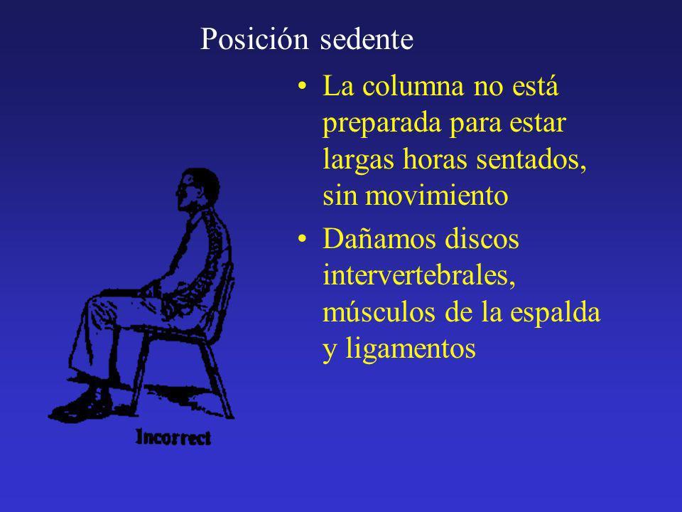 Posición sedente La columna no está preparada para estar largas horas sentados, sin movimiento Dañamos discos intervertebrales, músculos de la espalda