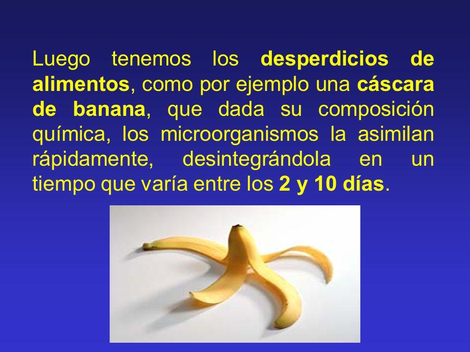Luego tenemos los desperdicios de alimentos, como por ejemplo una cáscara de banana, que dada su composición química, los microorganismos la asimilan