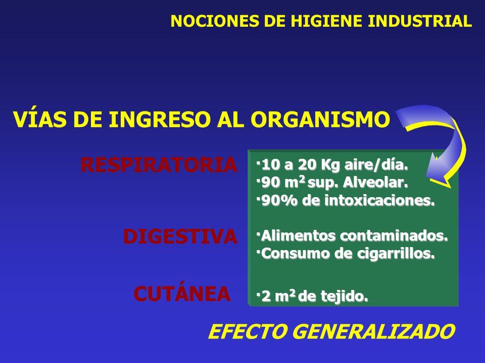 NOCIONES DE HIGIENE INDUSTRIAL ·10 a 20 Kg aire/día. ·90 m 2 sup. Alveolar. ·90% de intoxicaciones. ·Alimentos contaminados. ·Consumo de cigarrillos.
