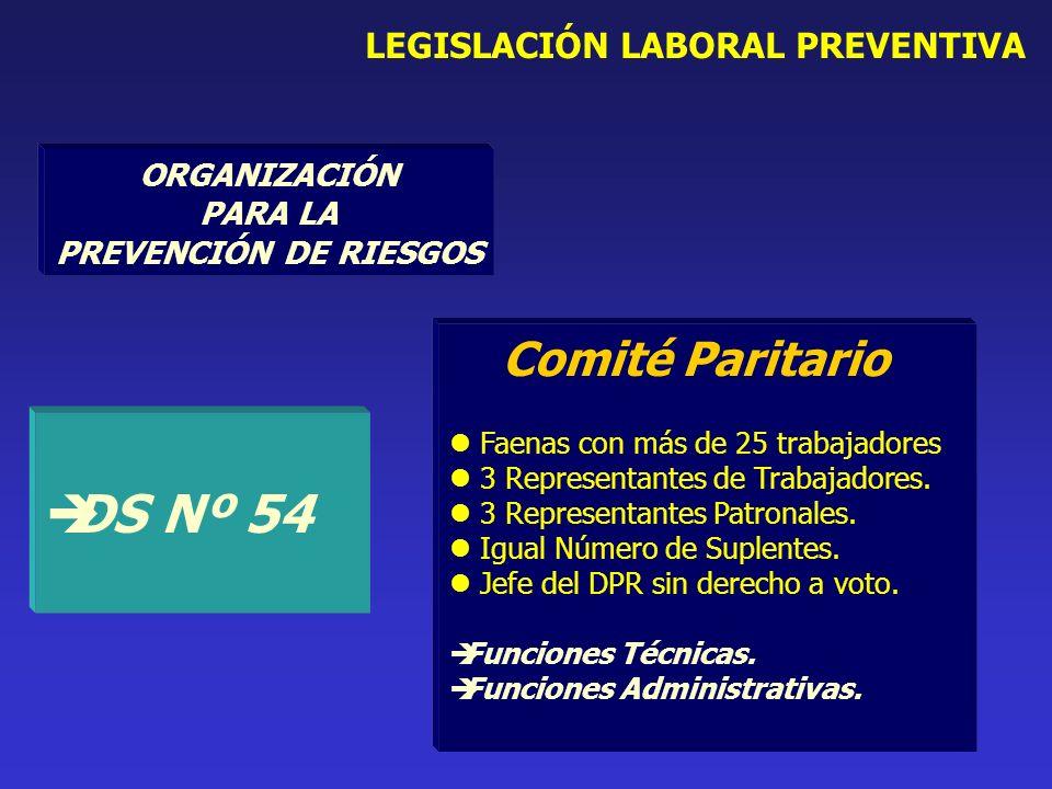 Comité Paritario Faenas con más de 25 trabajadores 3 Representantes de Trabajadores.