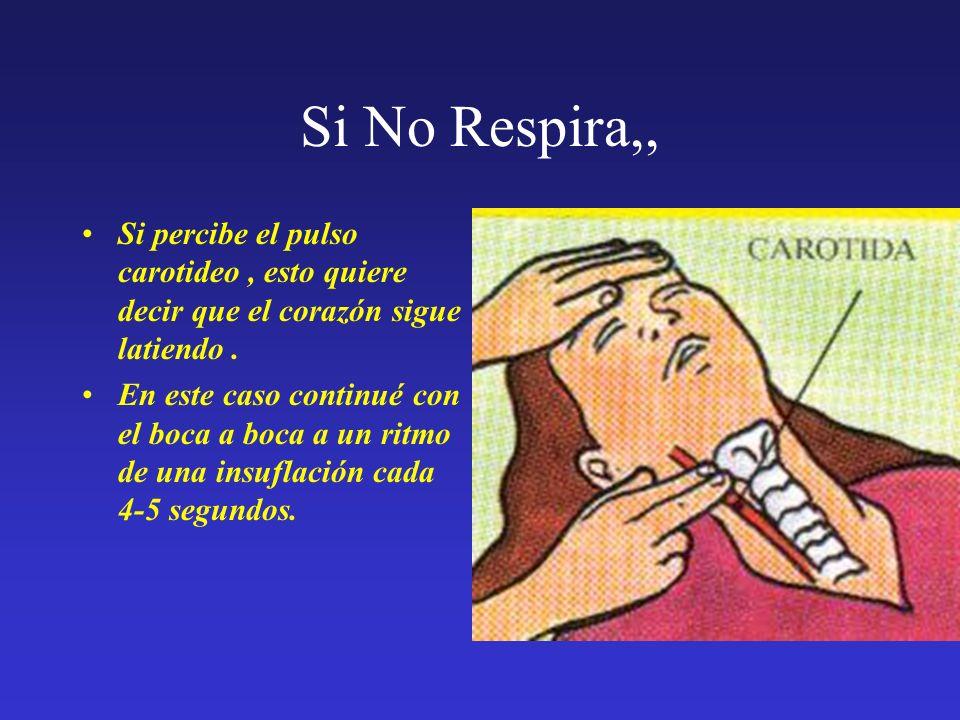 Si No Respira,, Si percibe el pulso carotideo, esto quiere decir que el corazón sigue latiendo. En este caso continué con el boca a boca a un ritmo de