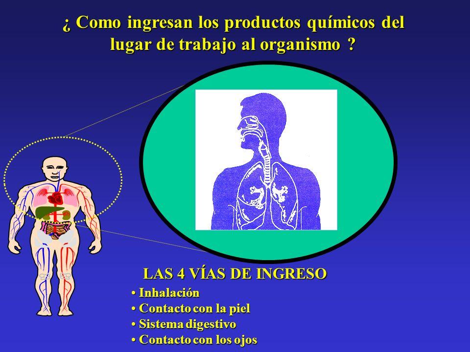 ¿ Como ingresan los productos químicos del lugar de trabajo al organismo ? LAS 4 VÍAS DE INGRESO Inhalación Inhalación Contacto con la piel Contacto c