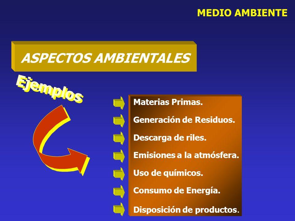MEDIO AMBIENTE Materias Primas. Generación de Residuos. Descarga de riles. Emisiones a la atmósfera. Uso de químicos. Consumo de Energía. Disposición