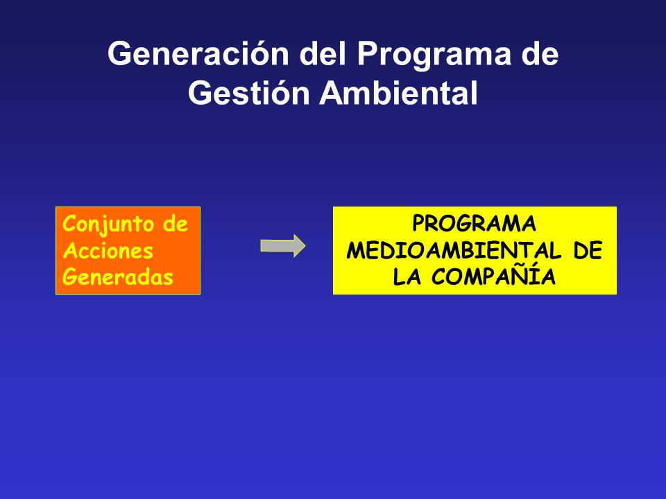 Conjunto de Acciones Generadas PROGRAMA MEDIOAMBIENTAL DE LA COMPAÑÍA Generación del Programa de Gestión Ambiental