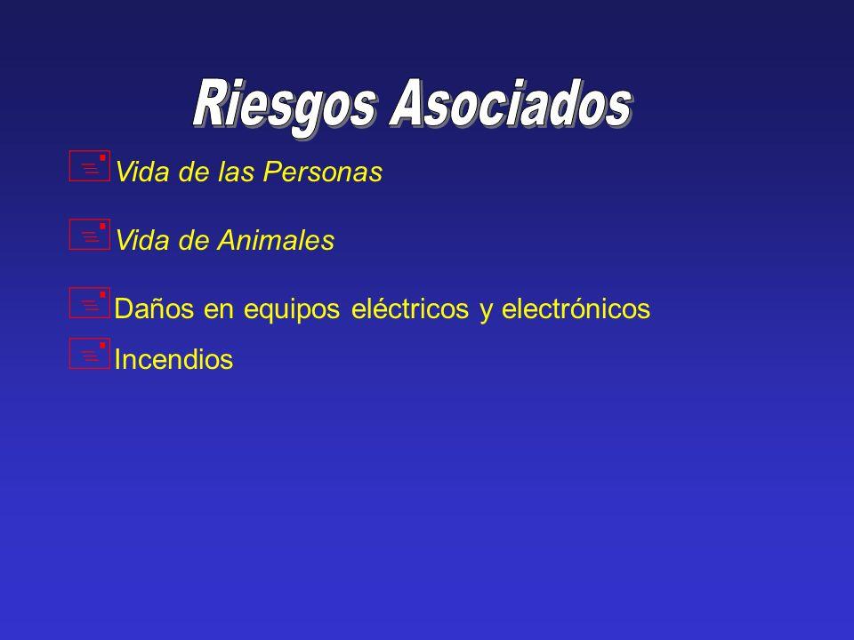 + Vida de las Personas + Vida de Animales + Daños en equipos eléctricos y electrónicos + Incendios
