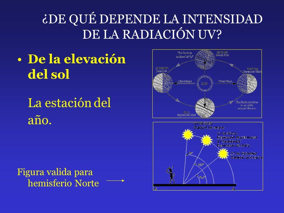 ¿DE QUÉ DEPENDE LA INTENSIDAD DE LA RADIACIÓN UV? De la elevación del sol La estación del año. Figura valida para hemisferio Norte