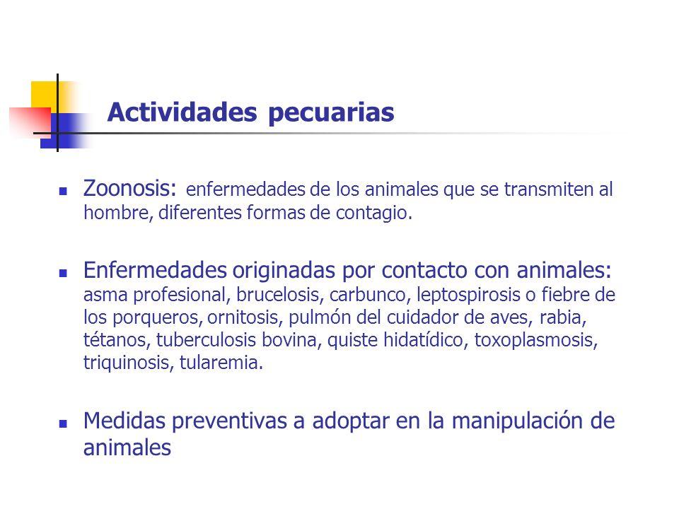 Actividades pecuarias Zoonosis: enfermedades de los animales que se transmiten al hombre, diferentes formas de contagio. Enfermedades originadas por c