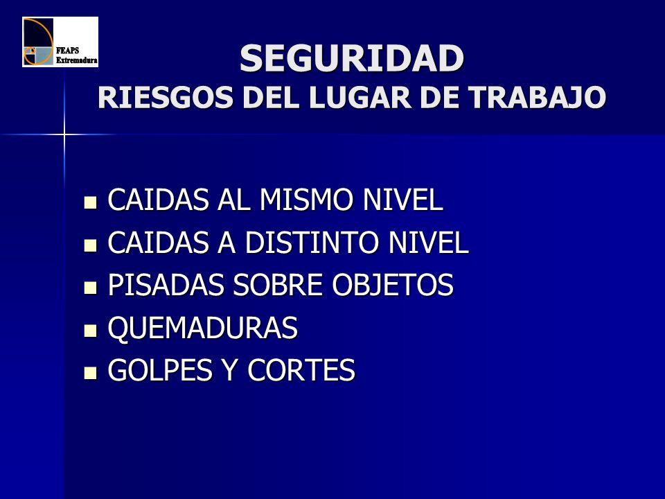 SEGURIDAD RIESGOS EN LOS LUGARES DE TRABAJO CAÍDAS A DISTINTO NIVEL ¿ POR QUÉ SE PRODUCEN .