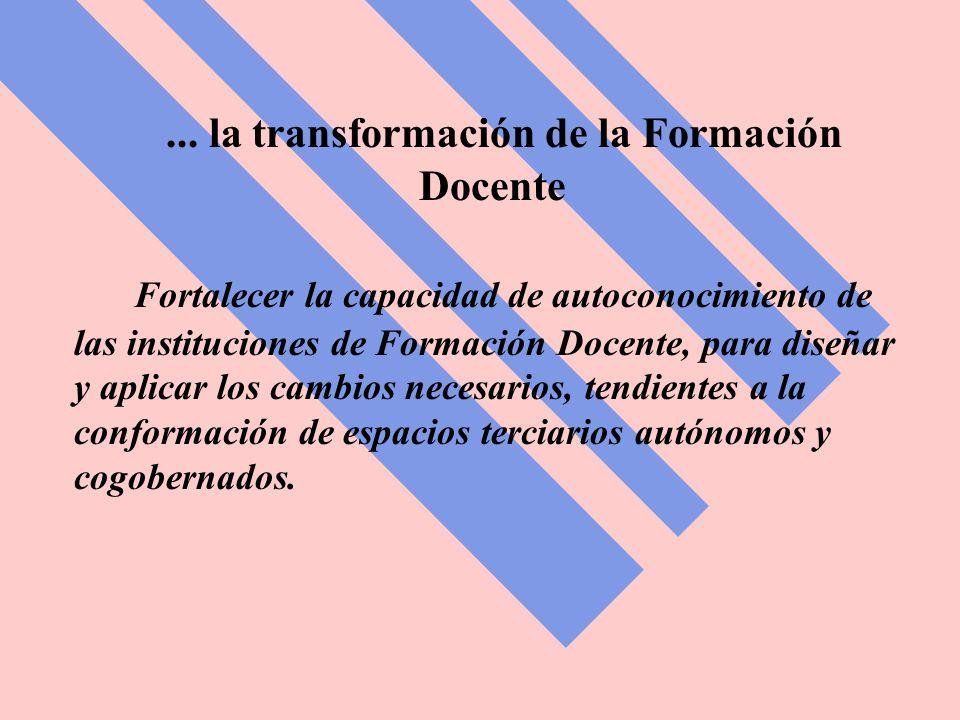 ... la transformación de la Formación Docente Fortalecer la capacidad de autoconocimiento de las instituciones de Formación Docente, para diseñar y ap
