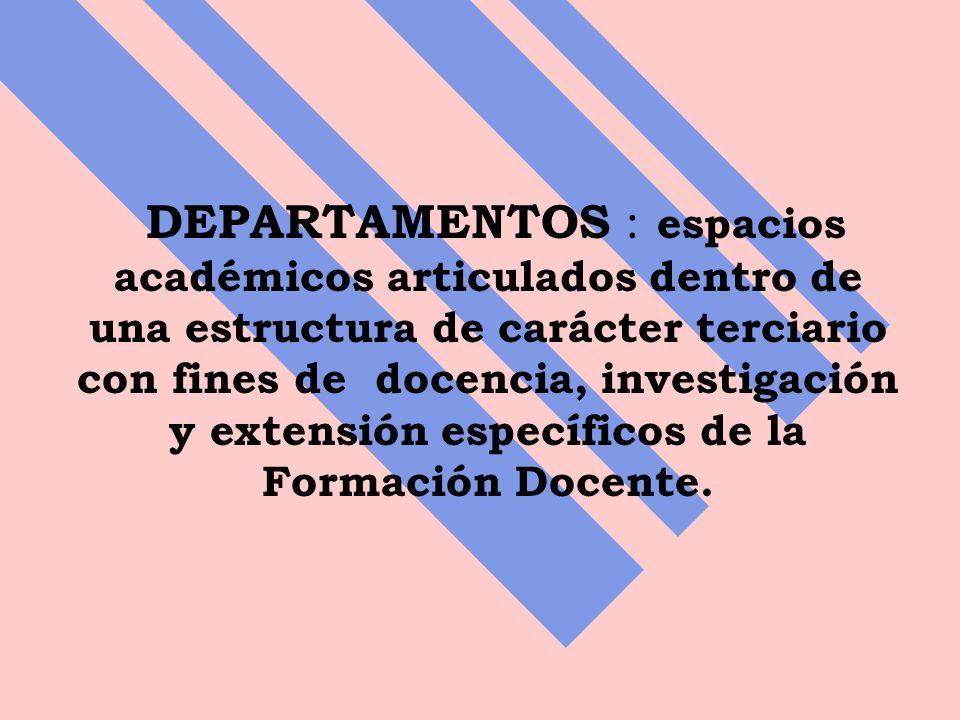 DEPARTAMENTOS : espacios académicos articulados dentro de una estructura de carácter terciario con fines de docencia, investigación y extensión específicos de la Formación Docente.