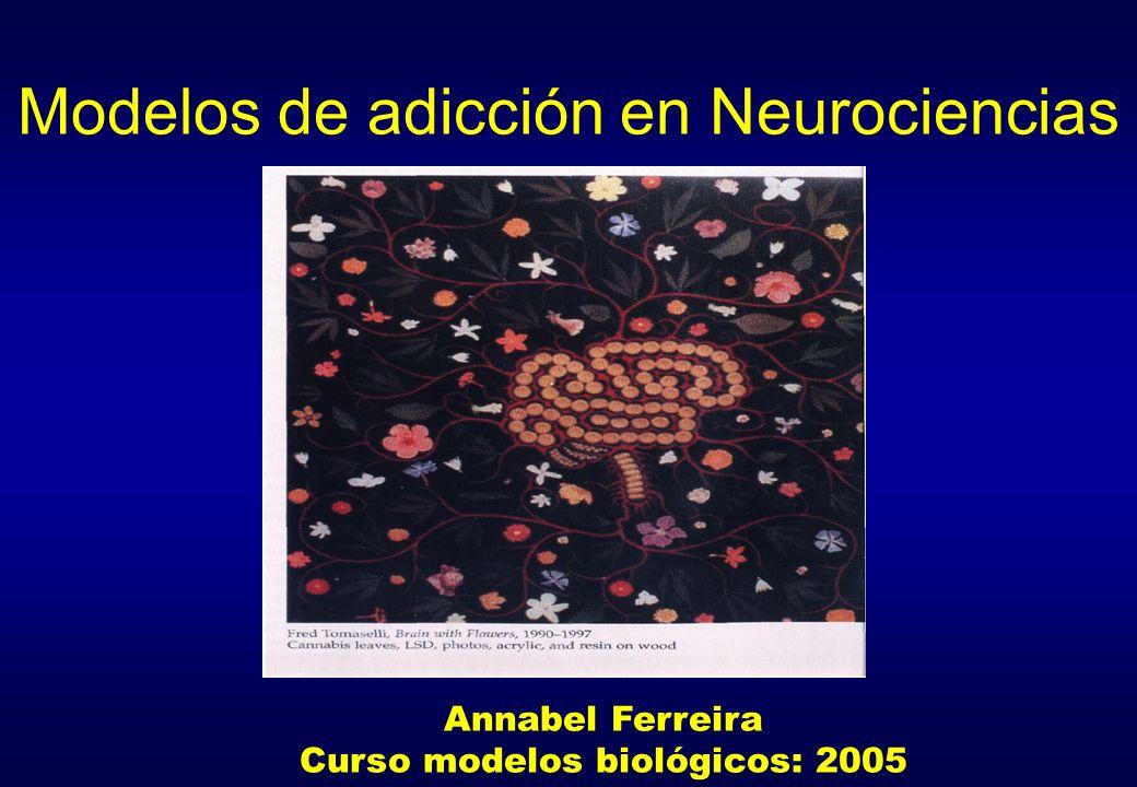 Modelos de adicción en Neurociencias Annabel Ferreira Curso modelos biológicos: 2005