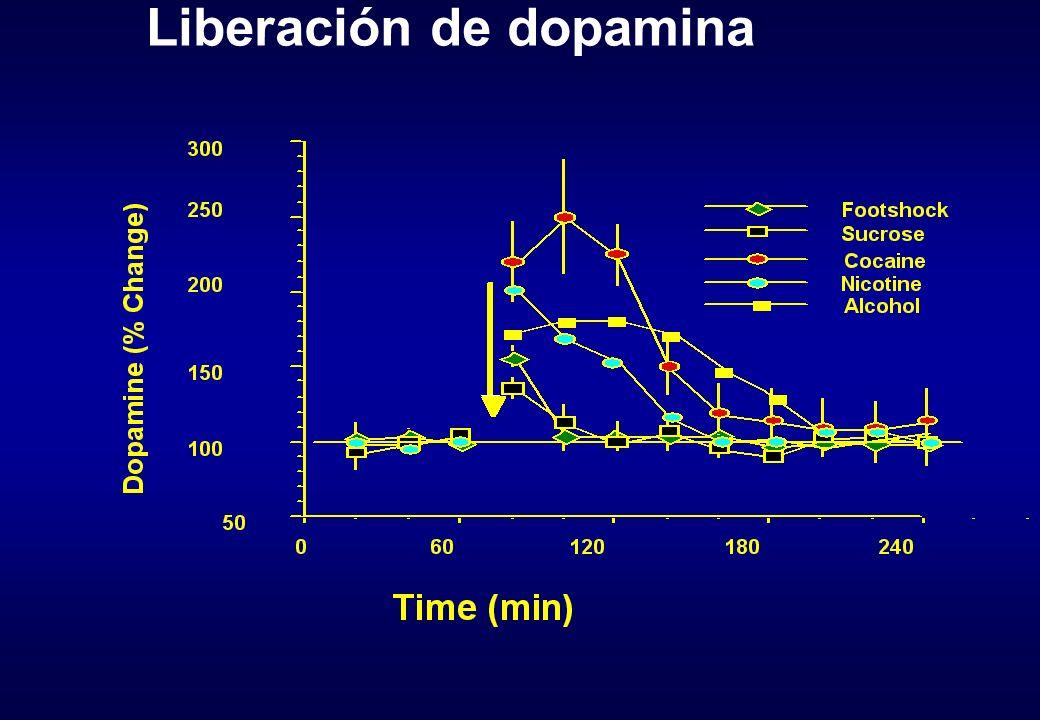 Liberación de dopamina