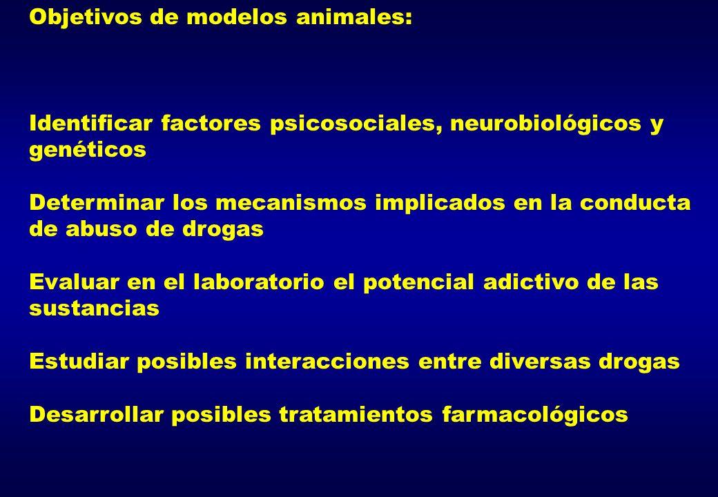 Objetivos de modelos animales: Identificar factores psicosociales, neurobiológicos y genéticos Determinar los mecanismos implicados en la conducta de