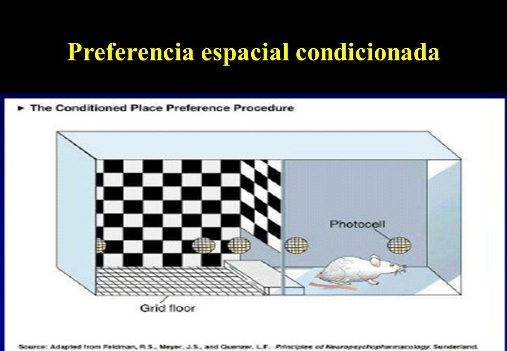 Preferencia espacial (foto) (crias prefieren?) Preferencia espacial condicionada