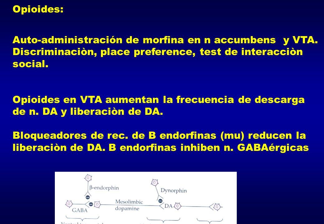 Opioides: Auto-administración de morfina en n accumbens y VTA. Discriminaciòn, place preference, test de interacciòn social. Opioides en VTA aumentan