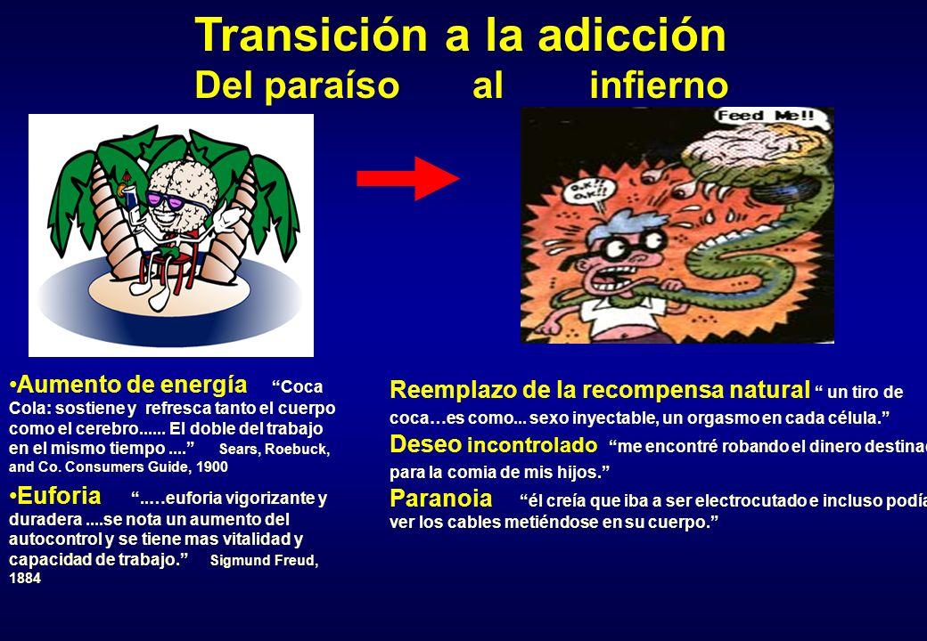 Transición a la adicción Del paraíso al infierno Aumento de energía Coca Cola: sostiene y refresca tanto el cuerpo como el cerebro...... El doble del