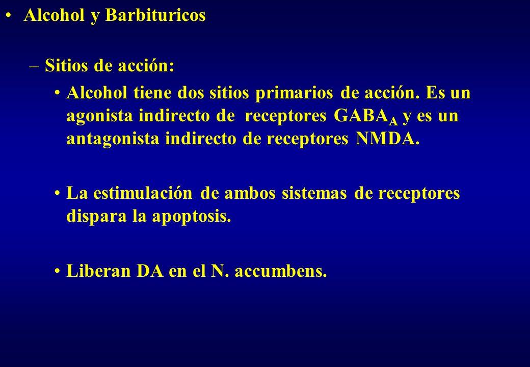 Alcohol y Barbituricos –Sitios de acción: Alcohol tiene dos sitios primarios de acción. Es un agonista indirecto de receptores GABA A y es un antagoni