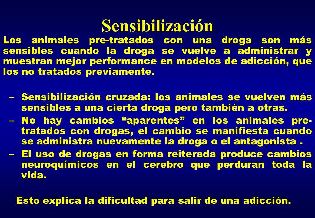 Sensibilización Los animales pre-tratados con una droga son más sensibles cuando la droga se vuelve a administrar y muestran mejor performance en mode