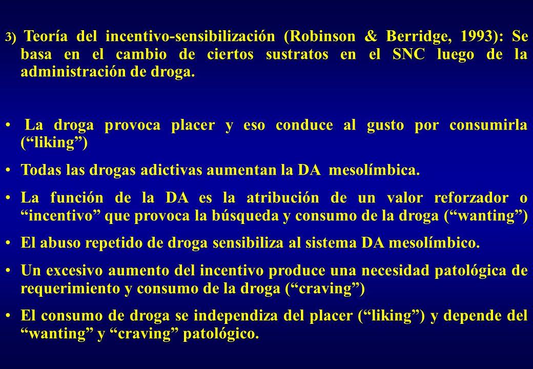 3) Teoría del incentivo-sensibilización (Robinson & Berridge, 1993): Se basa en el cambio de ciertos sustratos en el SNC luego de la administración de