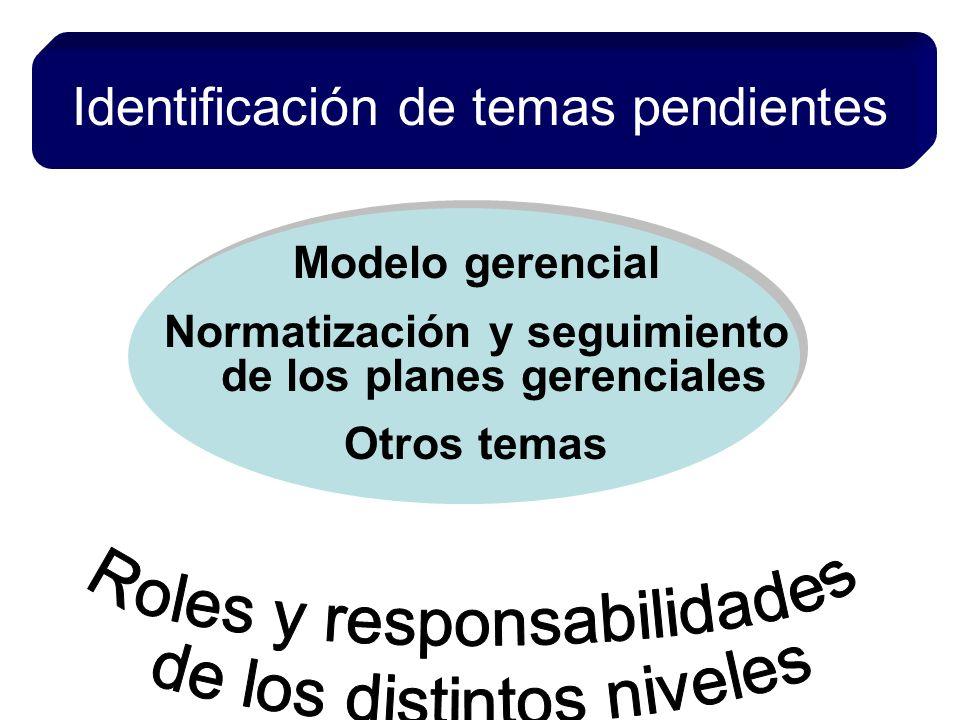 Identificación de temas pendientes Modelo gerencial Normatización y seguimiento de los planes gerenciales Otros temas