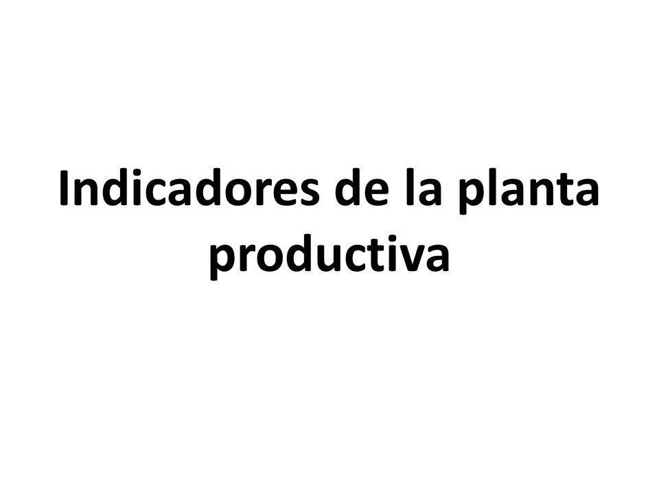 Indicadores de la planta productiva