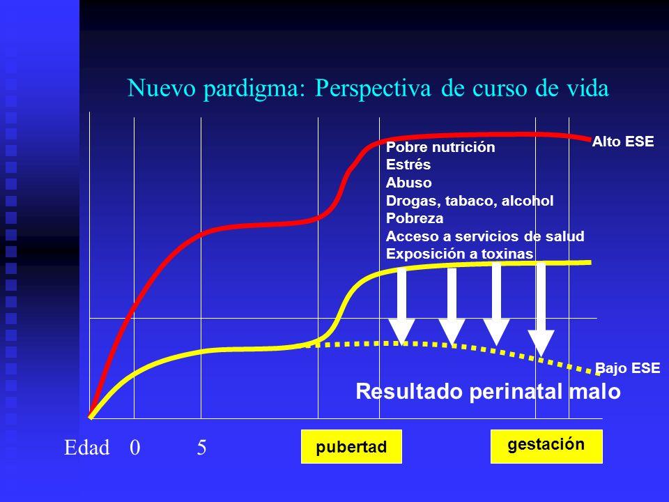 Pobre nutrición Estrés Abuso Drogas, tabaco, alcohol Pobreza Acceso a servicios de salud Exposición a toxinas Resultado perinatal malo 05 pubertad ges