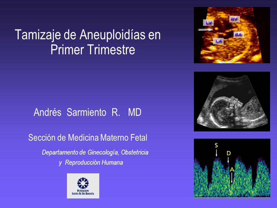 Tamizaje de Aneuploidías en Primer Trimestre Andrés Sarmiento R. MD Sección de Medicina Materno Fetal Departamento de Ginecología, Obstetricia y Repro