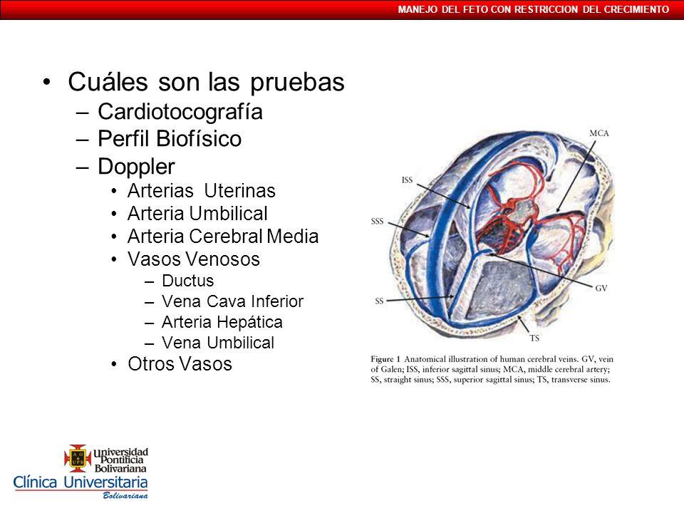 MANEJO DEL FETO CON RESTRICCION DEL CRECIMIENTO Cuáles son las pruebas –Cardiotocografía –Perfil Biofísico –Doppler Arterias Uterinas Arteria Umbilica
