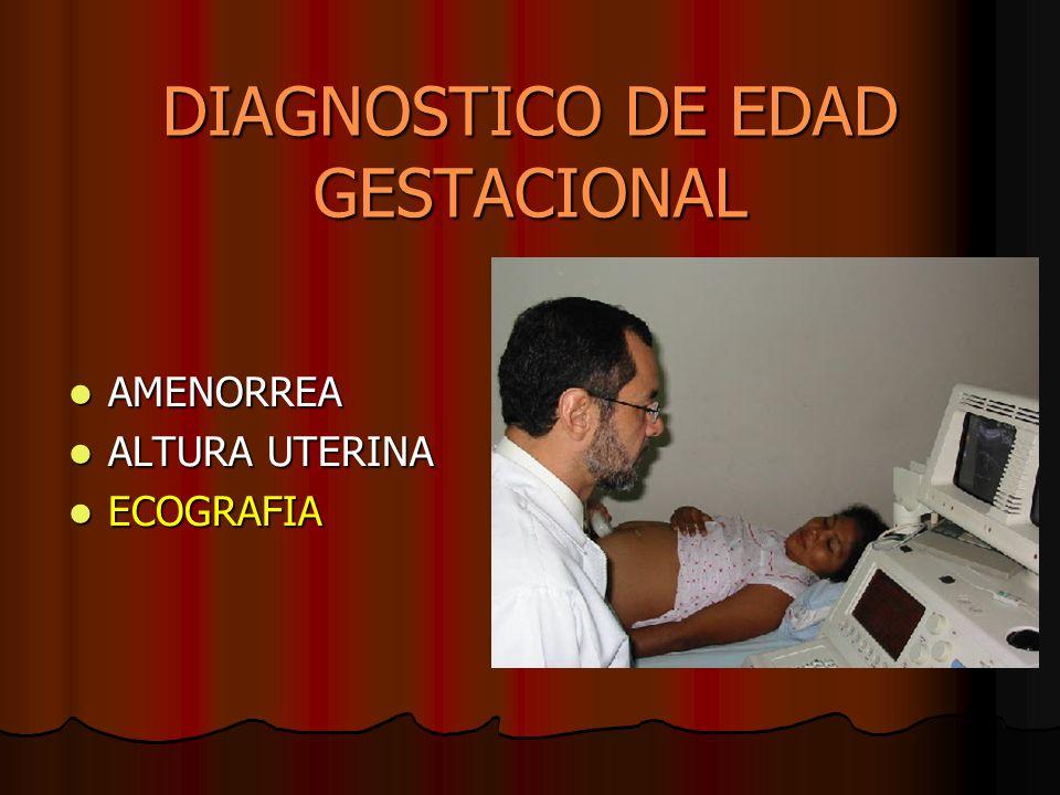 DIAGNOSTICO DE EDAD GESTACIONAL AMENORREA AMENORREA ALTURA UTERINA ALTURA UTERINA ECOGRAFIA ECOGRAFIA