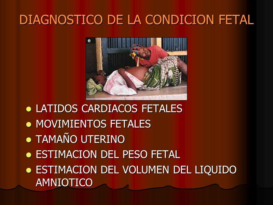 DIAGNOSTICO DE LA CONDICION FETAL LATIDOS CARDIACOS FETALES LATIDOS CARDIACOS FETALES MOVIMIENTOS FETALES MOVIMIENTOS FETALES TAMAÑO UTERINO TAMAÑO UT