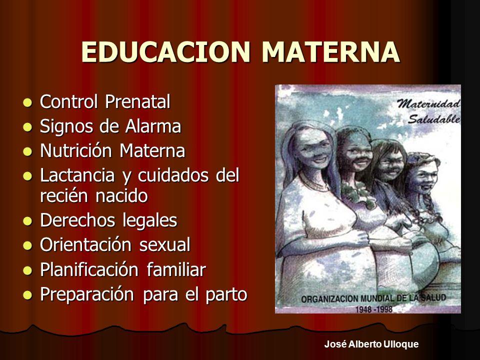 José Alberto Ulloque EDUCACION MATERNA Control Prenatal Control Prenatal Signos de Alarma Signos de Alarma Nutrición Materna Nutrición Materna Lactanc