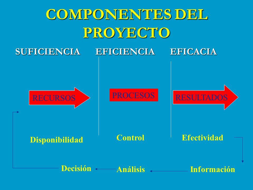COMPONENTES DEL PROYECTO SUFICIENCIA EFICIENCIA EFICACIA PROCESOS RECURSOS RESULTADOS Disponibilidad ControlEfectividad InformaciónAnálisis Decisión
