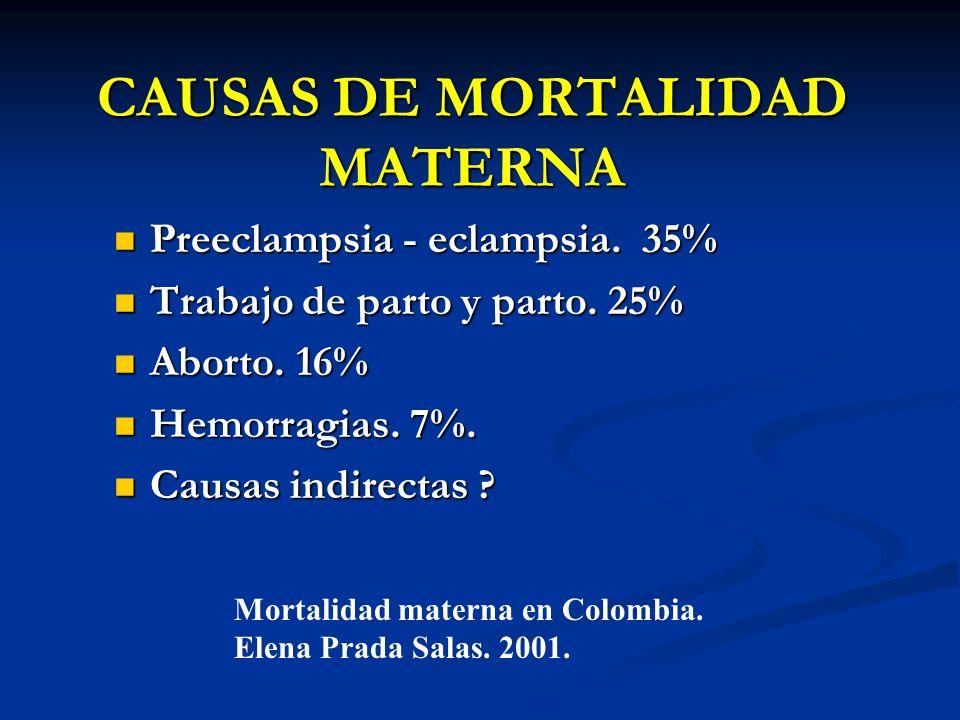 CAUSAS DE MORTALIDAD MATERNA Preeclampsia - eclampsia. 35% Preeclampsia - eclampsia. 35% Trabajo de parto y parto. 25% Trabajo de parto y parto. 25% A