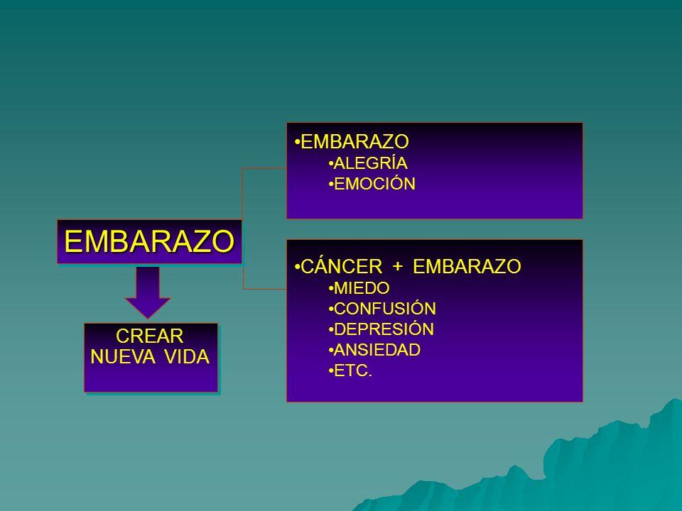 EMBARAZOEMBARAZO CREAR NUEVA VIDA EMBARAZO ALEGRÍA EMOCIÓN CÁNCER + EMBARAZO MIEDO CONFUSIÓN DEPRESIÓN ANSIEDAD ETC.