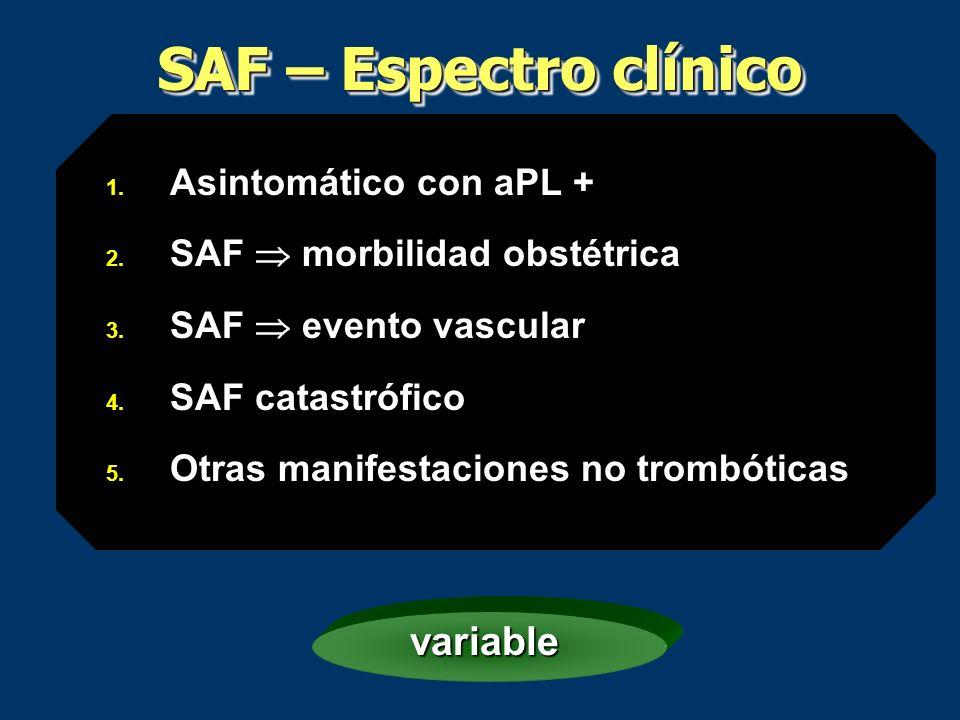 SAF – Espectro clínico 1. Asintomático con aPL + 2. SAF morbilidad obstétrica 3. SAF evento vascular 4. SAF catastrófico 5. Otras manifestaciones no t