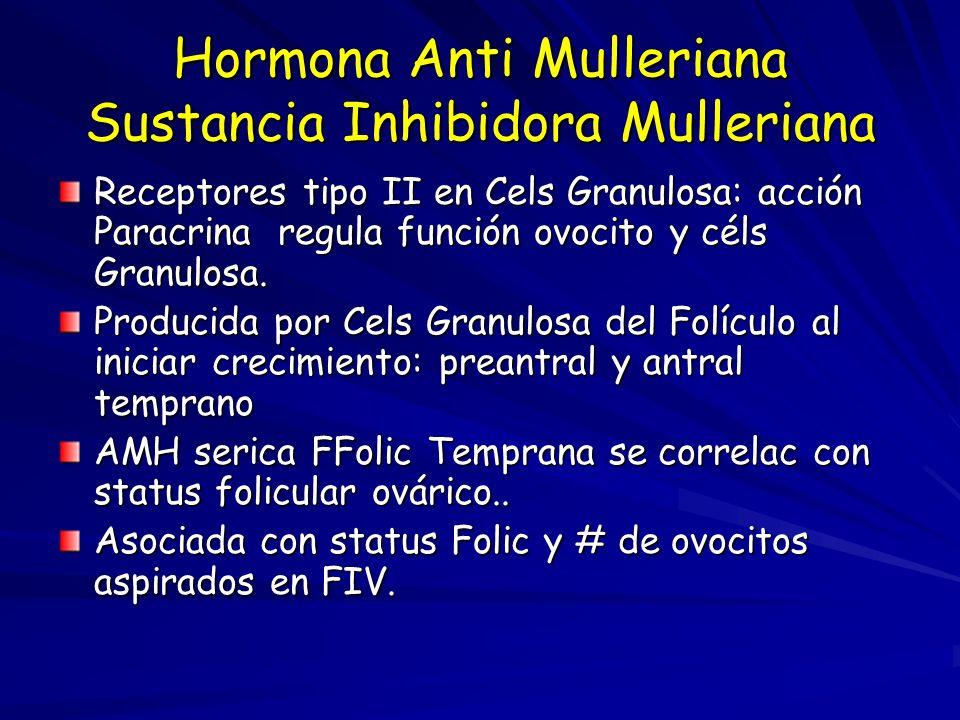 Hormona Anti Mulleriana Sustancia Inhibidora Mulleriana Receptores tipo II en Cels Granulosa: acción Paracrina regula función ovocito y céls Granulosa.