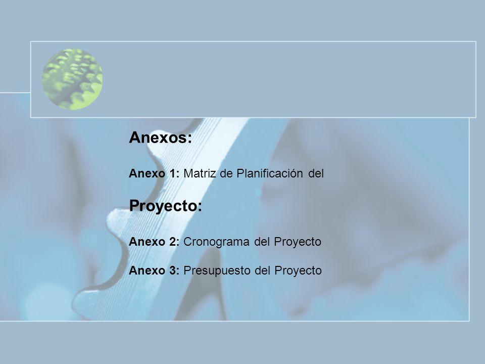 Anexos: Anexo 1: Matriz de Planificación del Proyecto: Anexo 2: Cronograma del Proyecto Anexo 3: Presupuesto del Proyecto