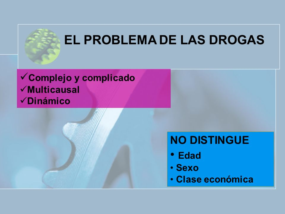 EL PROBLEMA DE LAS DROGAS Complejo y complicado Multicausal Dinámico NO DISTINGUE Edad Sexo Clase económica