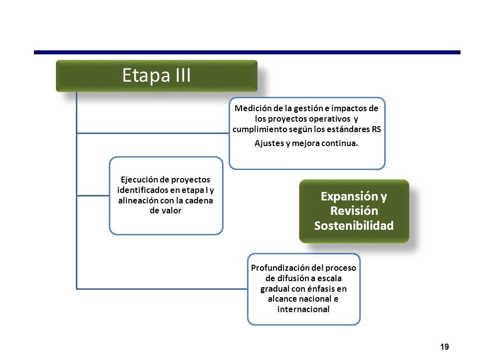 19 Etapa III Medición de la gestión e impactos de los proyectos operativos y cumplimiento según los estándares RS Ajustes y mejora continua. Profundiz