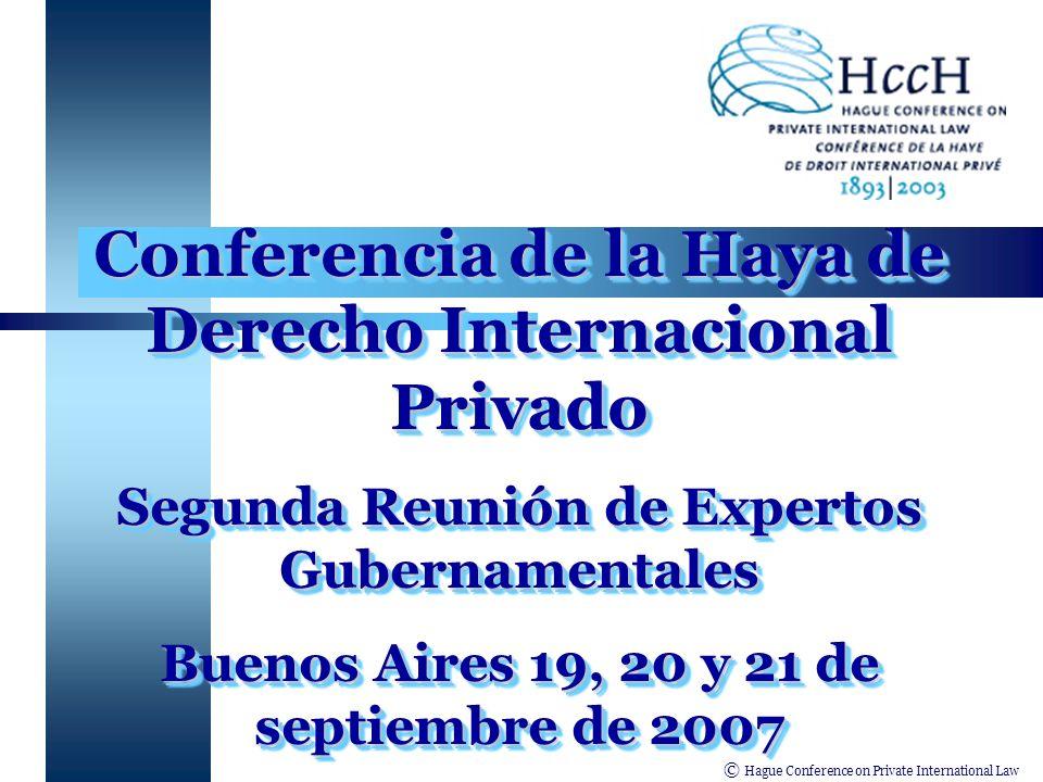 © Hague Conference on Private International Law Desarrollo de la Temática en las Américas Primera Reunión de Expertos Gubernamentales (IIN -agosto de 2002).