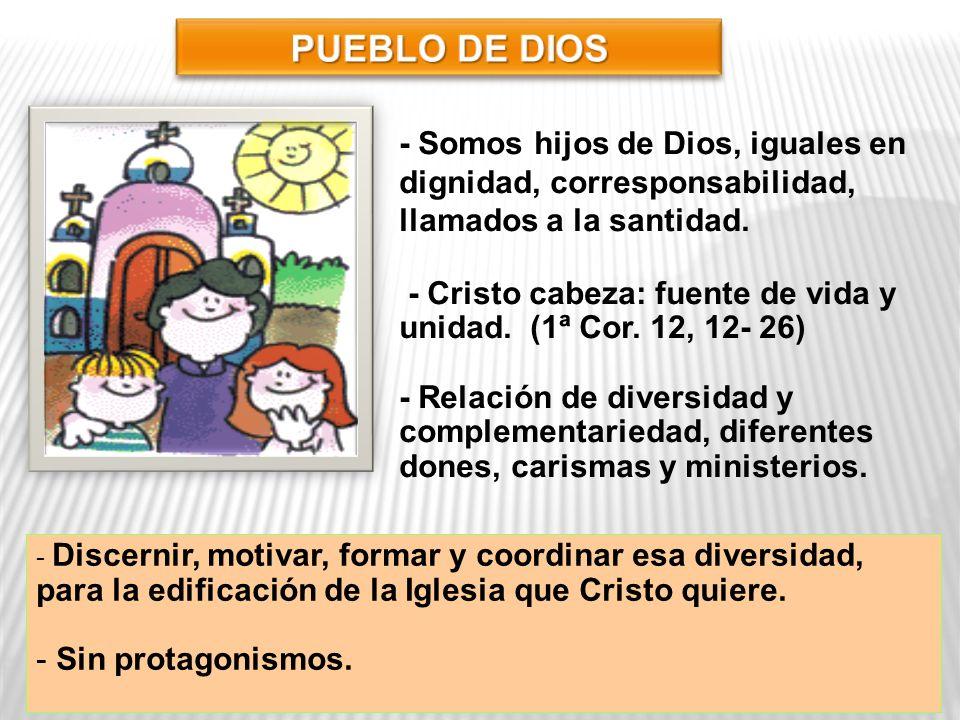 - Somos hijos de Dios, iguales en dignidad, corresponsabilidad, llamados a la santidad. - Cristo cabeza: fuente de vida y unidad. (1ª Cor. 12, 12- 26)