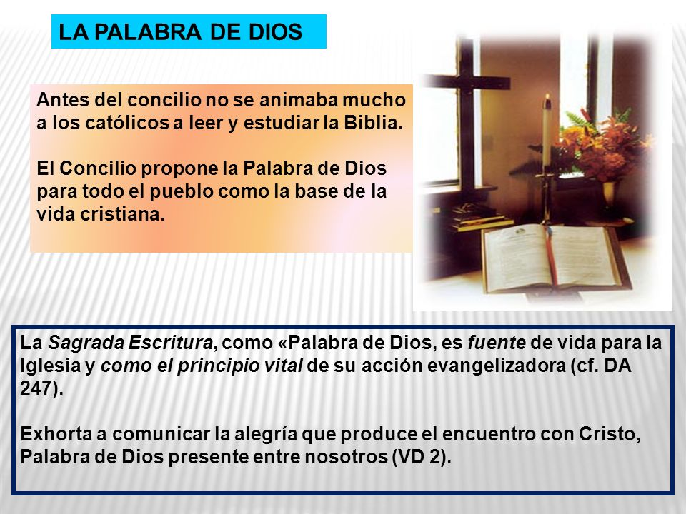 Antes del concilio no se animaba mucho a los católicos a leer y estudiar la Biblia. El Concilio propone la Palabra de Dios para todo el pueblo como la