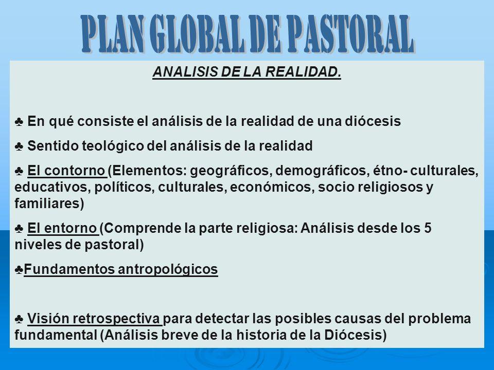 ANALISIS DE LA REALIDAD. En qué consiste el análisis de la realidad de una diócesis Sentido teológico del análisis de la realidad El contorno (Element