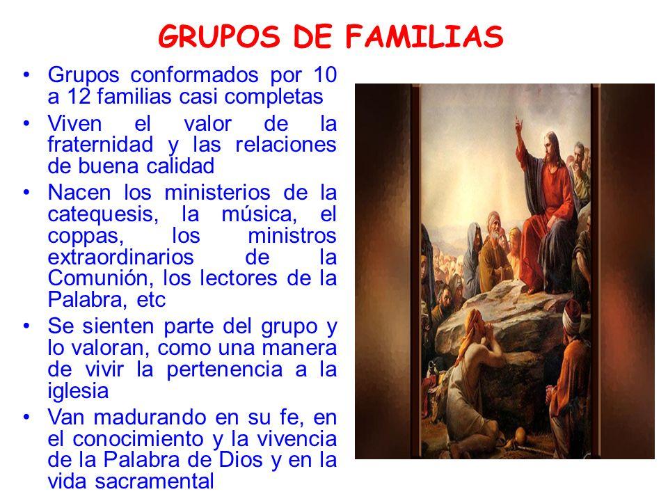 GRUPOS DE FAMILIAS Grupos conformados por 10 a 12 familias casi completas Viven el valor de la fraternidad y las relaciones de buena calidad Nacen los ministerios de la catequesis, la música, el coppas, los ministros extraordinarios de la Comunión, los lectores de la Palabra, etc Se sienten parte del grupo y lo valoran, como una manera de vivir la pertenencia a la iglesia Van madurando en su fe, en el conocimiento y la vivencia de la Palabra de Dios y en la vida sacramental