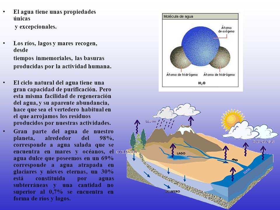 El agua tiene unas propiedades únicas y excepcionales. Los ríos, lagos y mares recogen, desde tiempos inmemoriales, las basuras producidas por la acti