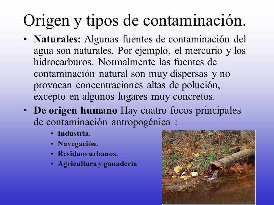 Origen y tipos de contaminación. Naturales: Algunas fuentes de contaminación del agua son naturales. Por ejemplo, el mercurio y los hidrocarburos. Nor